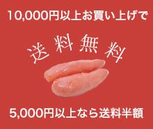 10000円以上お買い上げで送料無料5000円以上なら送料半額